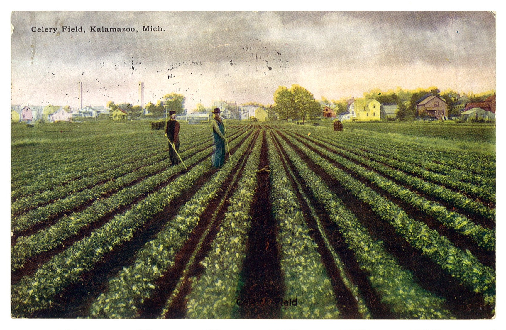 Muck Farms and Dutch Immigrants